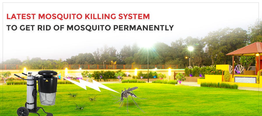 Best Way to Get Rid of Mosquitoes in Yard - Best Mosquito ...