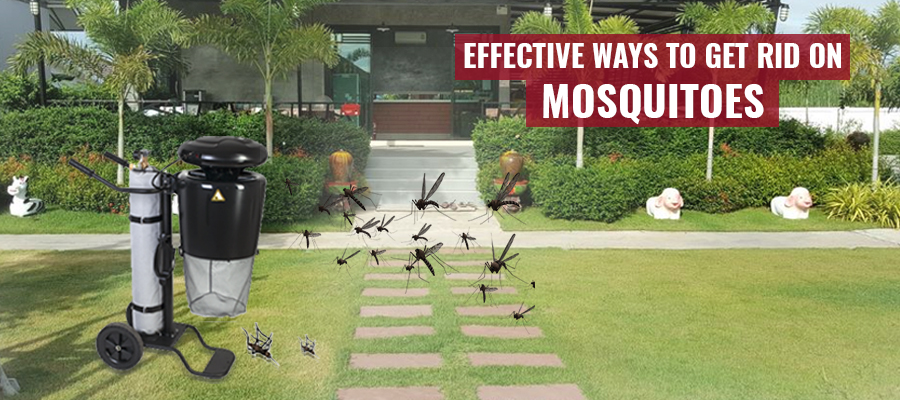 Easy Methods To Get Rid Off Mosquitoes